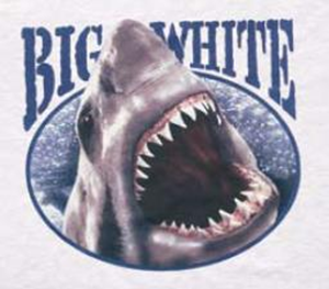 t-shirts-big-white